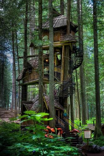 Dünyanın En Harika 17 Ağaç Evi