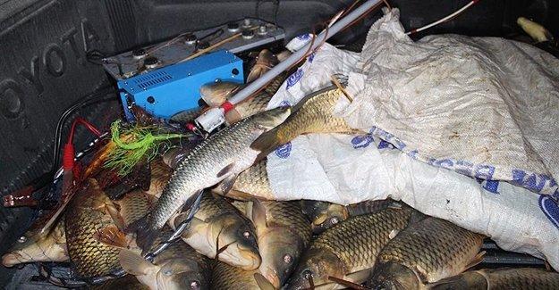 Elektro Şok Aletine Balık Avlamaya Büyük Ceza