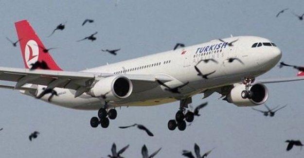 THY Uçağı KKTC'de Tehlike Atlattı
