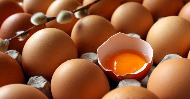 Yumurtanın Bilinmeyen Sırrı