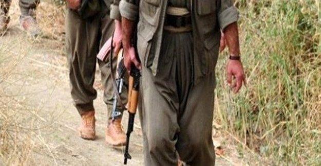 15 PKK'lı Etkisiz Hale Getirildi