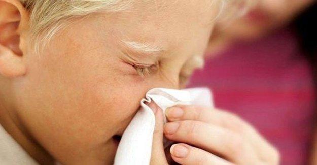 İklim Değişikliği Alerji Ve Astımı Arttırıyor