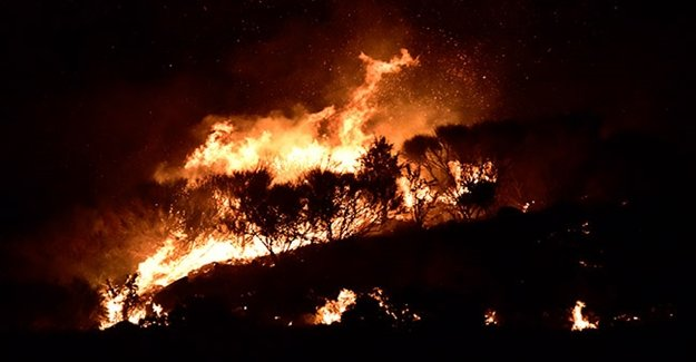 Ege'de Korkutan Yangın! Kısa Sürede Büyüdü!