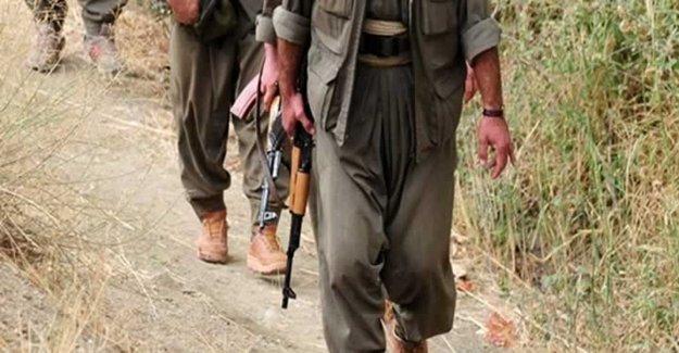 O İlde PKK'ya Çok Ağır Darbe!