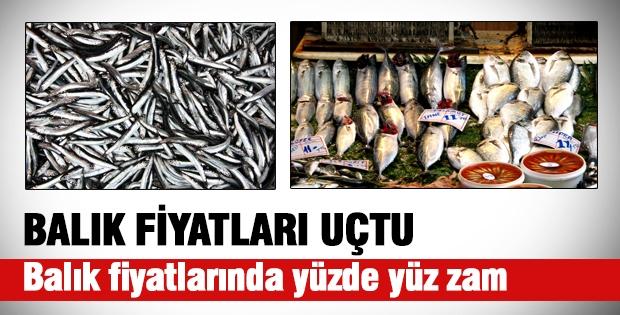 Balık Fiyatları Uçtu, Yüzde Yüz Zam