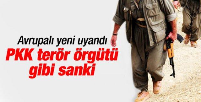 Batı PKK'nın terör örgütü olduğunu ancak anladı