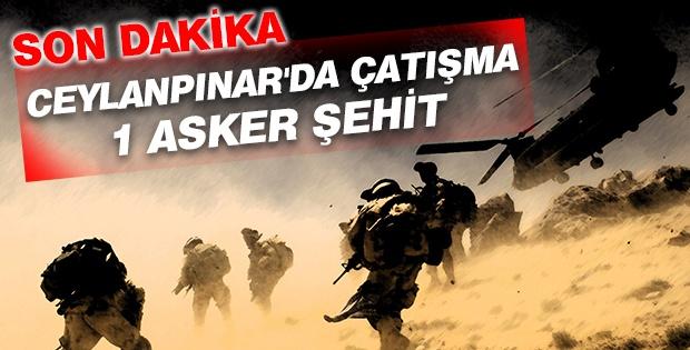 Ceylanpınar'da çatışma: 1 asker şehit