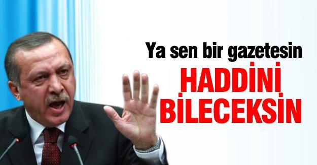Erdoğan: Ya sen bir gazetesin haddini bileceksin