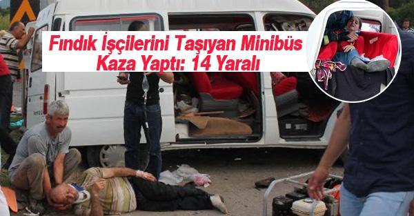 Fındık İşçilerini Taşıyan Minibüs Kaza Yaptı: 14 Yaralı
