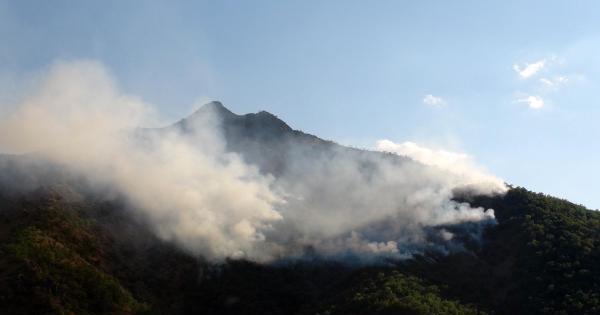 Karakoldan Açılan Ateş Sonrası Otların Tutuşmasıyla Orman Yangını Başladı