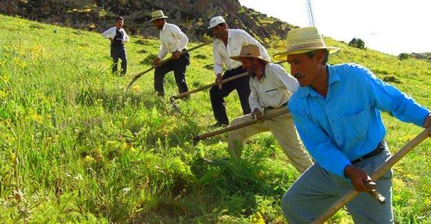 Maliye Bakanı Şimşek'ten çiftçiye müjde