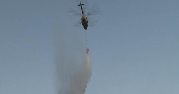 Maltepe'de Orman Yangını...