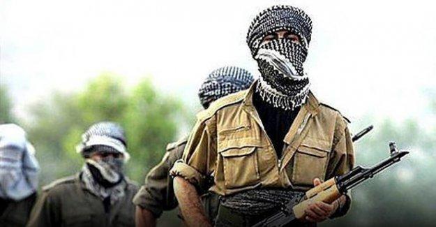 PKK ve PYD nin hain planı