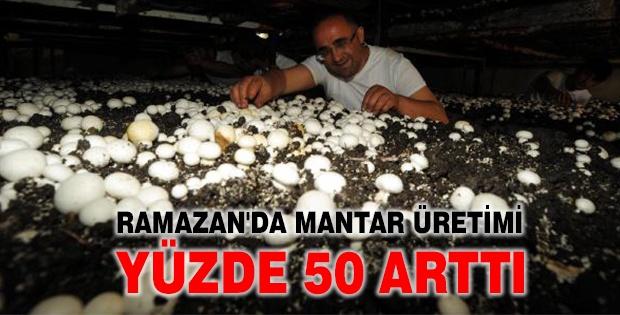 Ramazan'da Mantar Üretimi Yüzde 50 Arttı