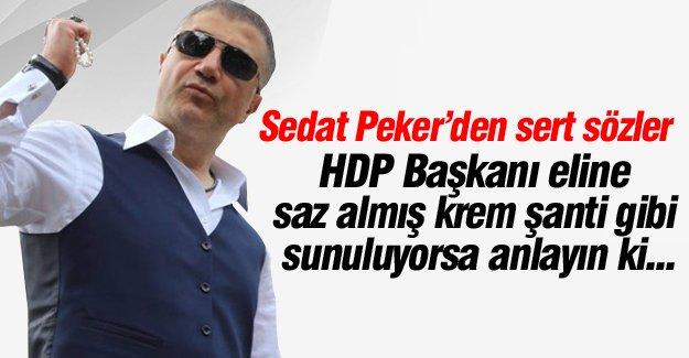 Sedat Peker Doğan Medya Grubu ve HDP'yi topa tuttu