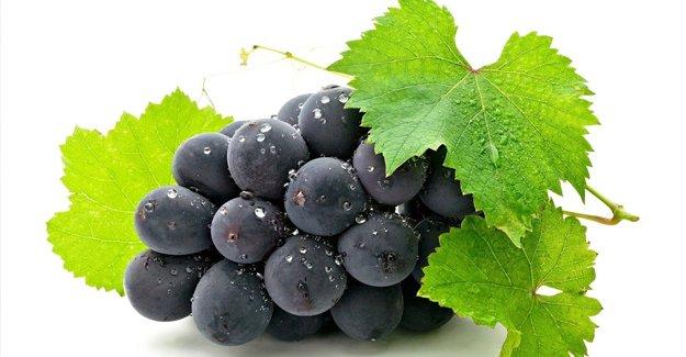 Siyah üzüm yumurtalık kistine doğal çözüm
