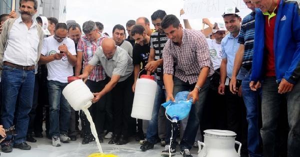 Süt Üreticileri Süt Dökerek Hükümeti Protesto Etti