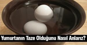 Yumurtanın Taze Olduğunu Nasıl Anlarız?