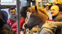 At Kafasıyla Bir Gün Geçirmek